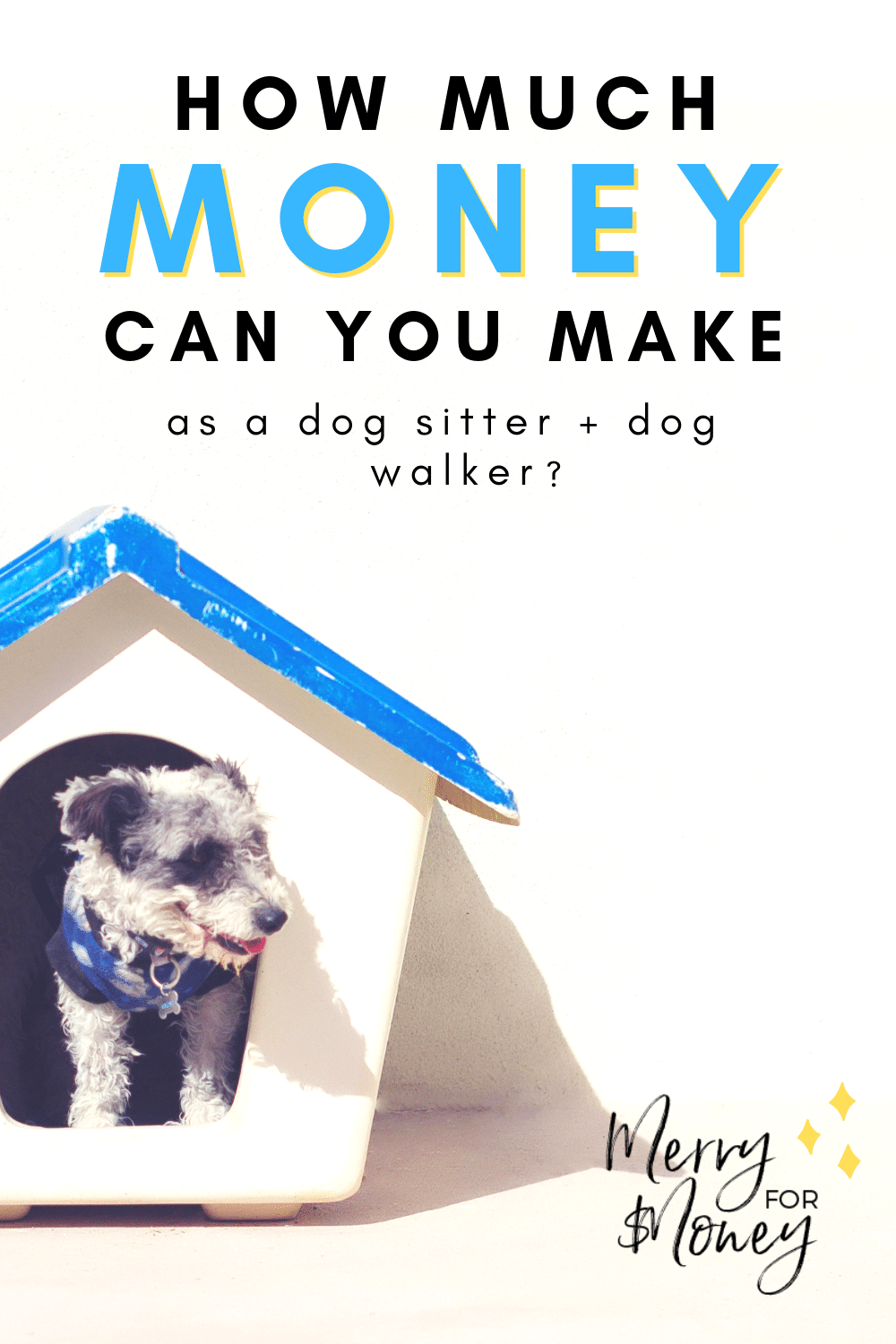 How Much Money Make as a Dog Walker and Dog Sitter -- Extra Income Side Hustle Pet Sitting Rover DogVacay dog walking, dog daycare.