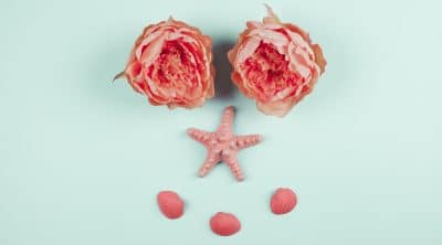 painted-coral-peonies-flowers-starfish-clams-mint-background